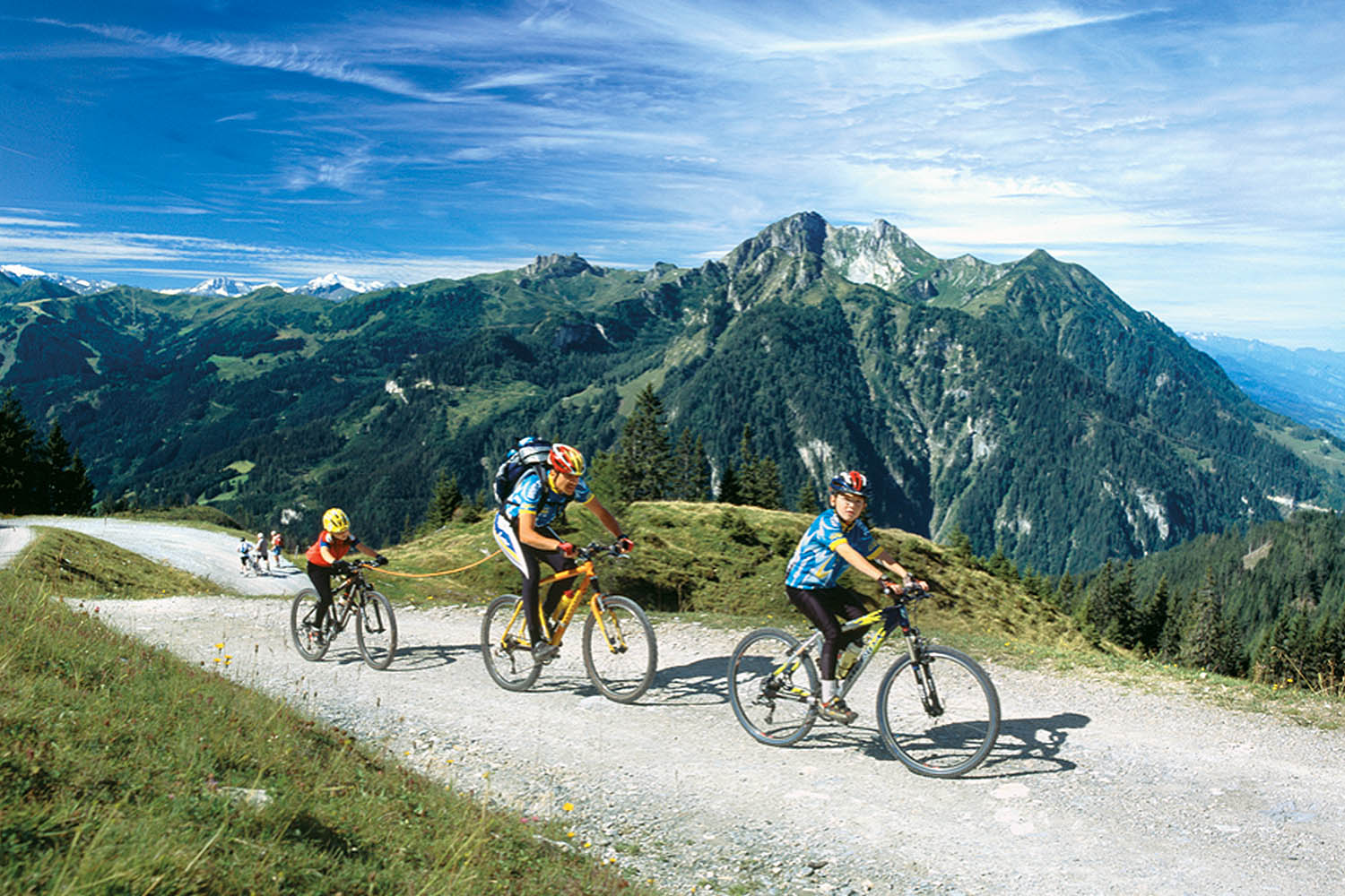 Numerous cycling tours start in the direct surroundings